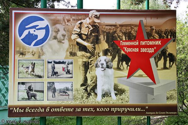 http://77rus.smugmug.com/Military/470th-Red-Star-centre/i-jb2Pbwf/0/M/470th-Dog-training-centre02-M.jpg