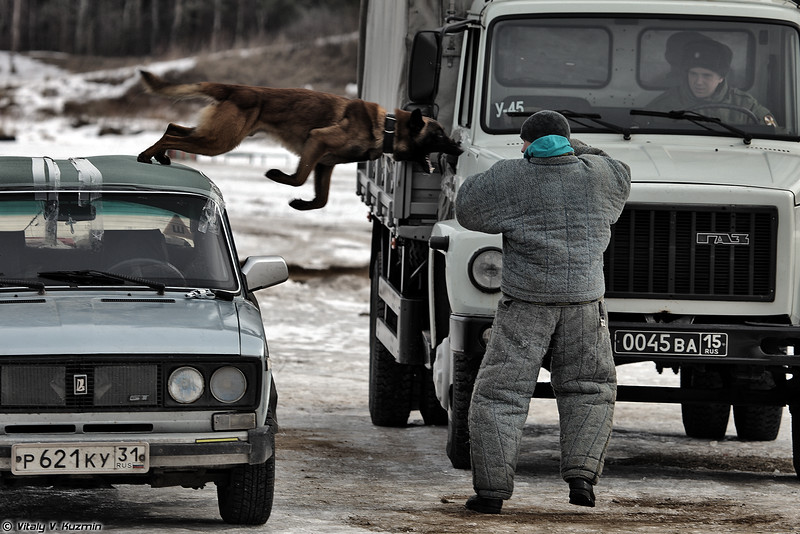 Russian Military Photos and Videos #3 - Page 40 VV-Day2016-12-L